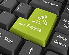 Jak se chovat při elektronické dražbě